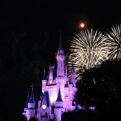 walt disney world trips