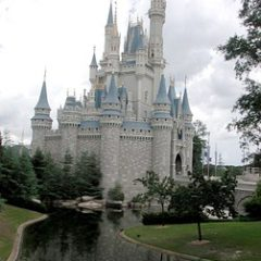 what is best time to visit Disney world