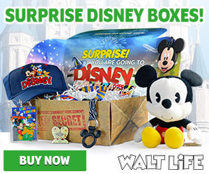 disney in a box